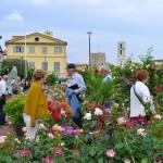 Rosenfest in Grasse