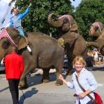 Arlette Gruss_Elefantenparade_Cabris_Invitart