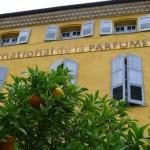 MIP_Grasse_Museum_Invitart