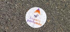 sieste-Parfumée_Grasse_invitart.jpg