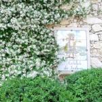 Fete du Jasmin_Grasse_jardin_Invitart