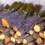 Lavendel_Bund_invitart