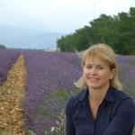 Lavendel_Juli_invitart
