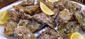 Austernteller_invitart