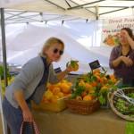 Grasse_Markt_Orangen_UG_ invitart