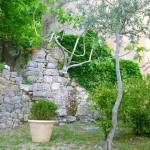mas de l'olivine_jardin_invitart